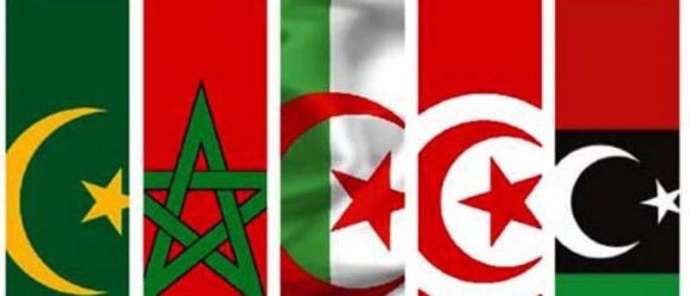 Article : Pourquoi Le Jeune Maghrébin?